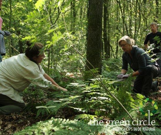 Oerkracht 2019 Vers Houtbewerking The Green Circle - Workshops in de Natuur Klein met logo 7