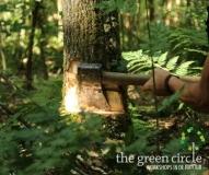 Oerkracht 2019 Vers Houtbewerking The Green Circle - Workshops in de Natuur Klein met logo 5