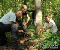 Oerkracht 2019 Vers Houtbewerking The Green Circle - Workshops in de Natuur Klein met logo 8