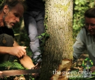 Oerkracht 2019 Vers Houtbewerking The Green Circle - Workshops in de Natuur Klein met logo 9-1